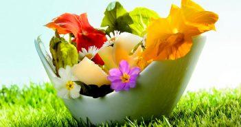 recette sans cuisson salade des alpages