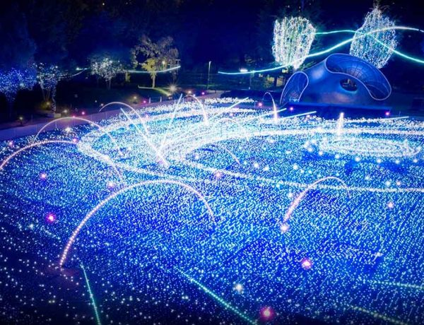 Top 5 des plus belles illuminations de Noël dans le monde